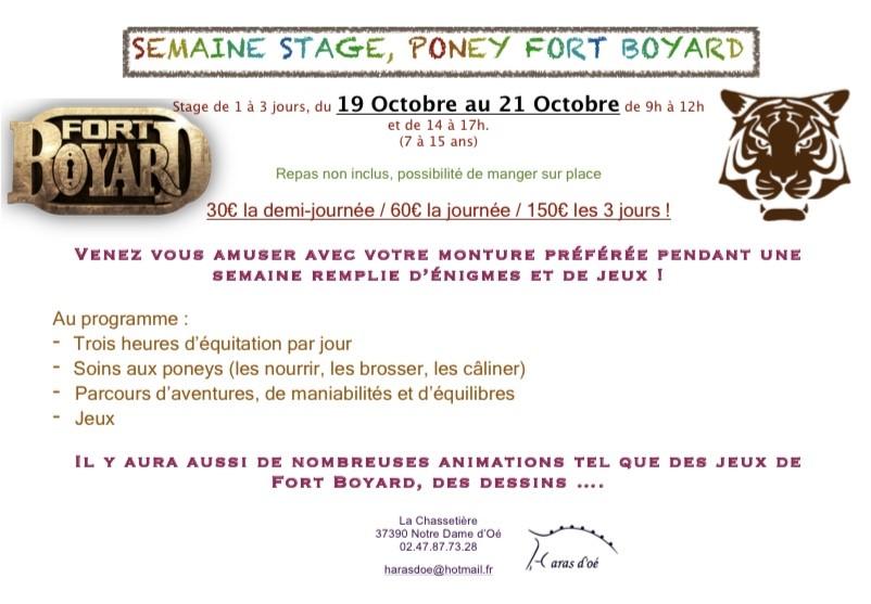 stage fort boyard toussaint